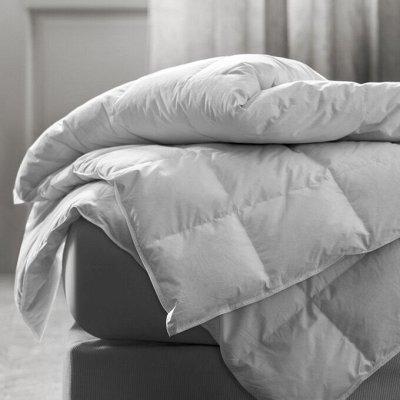 Простыни на резинке и непромокаемые! Невероятные скидки! — Одеяла — Одеяла