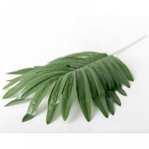 Лист зелени Пальма зеленый 44см
