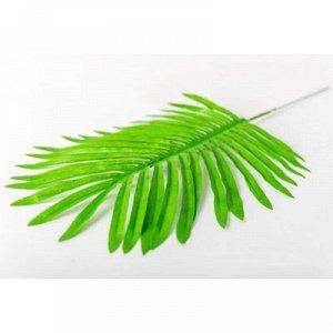 Лист зелени Пальма светло-зеленый 45см