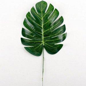 Лист зелени Монстера зеленый 35см