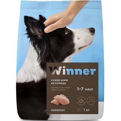 (2040) Все необходимое для любимых питомцев. Акция! — Корма Winner сухие для собак — Аксессуары