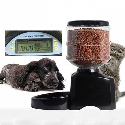 Мурр-маркет! Подарки для ваших питомцев! Антилай! 5 — Для кормления — Миски и поилки для собак