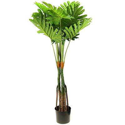 Домашняя мода 68 - любимая хозяйственная! — Интерьер-Цветы искусственные — Комнатные растения и уход