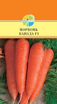 Морковь в упаковке: 200 шт  Шантенэ,110-130 дней. Длина 18-20 см, вес до 120 гр. Среднепоздний, очень урожайный гибрид Флакке. Период от полной всхожести семян до начала хозяйственной годности 110-130