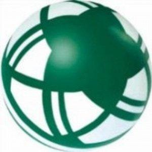 "Мяч д.125 мм ""Лепесток"" окрашенный по трафарету"
