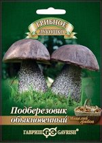 Грибы Мицелий Подберезовик обыкновенный на зерновом субстрате /Гавриш/ 15 мл