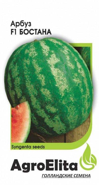 Семена «ГАВРИШ» в наличии, огромный ассортимент — AgroElita — Семена овощей