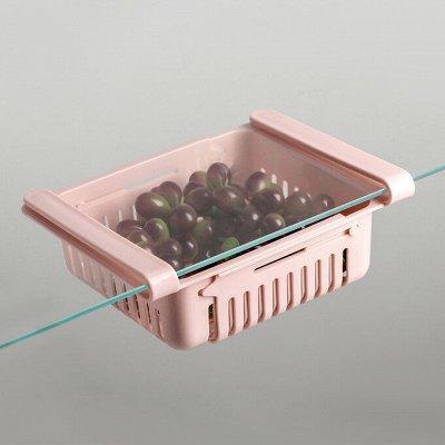 Посуда для Готовки и Сервировки. Контейнера и Термосы.  — Подвесные полки в холодильник — Контейнеры и ланч-боксы