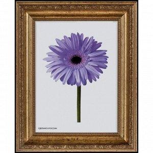Рама для картин (зеркал) 40 х 50 х 3.3 см. пластиковая. Dorothy золотая