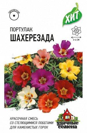 Портулак Шахерезада*, смесь 0,01 г ХИТ х3 DHп