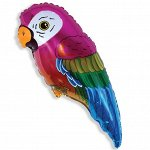 "902556 Шар-фигура/ мини фольга, ""Попугай"" (FM), 43 см х 21 см"