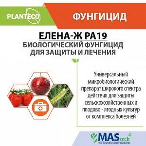 Елена Ж PA19 Planteco