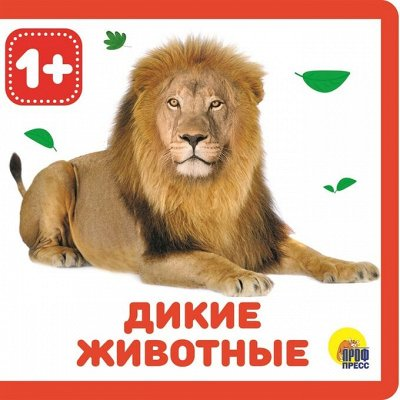 Кот-сказочник-26! Читаем, играем, развиваемся! — КНИЖКИ НА ПЕНЕ — Детская литература