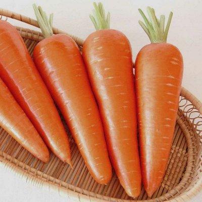 2000 видов семян для посадки! Подкормки, удобрения.   — Семена Моркови — Семена овощей