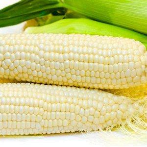 Кукуруза сахарная Белое облако