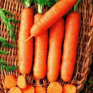 Морковь Без сердцевины (Лонге роте)