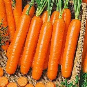 Морковь Роял Форто