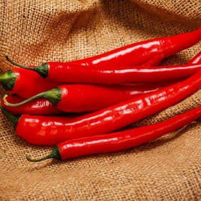 2000 видов семян для посадки! Подкормки, удобрения. — Семена перца острого. ХИТЫ от 11р! — Семена овощей