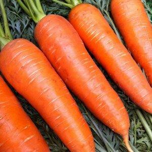 Морковь Сладкий хруст