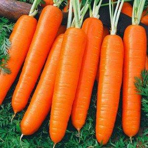 Морковь Нэля F1