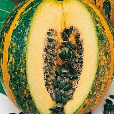 2000 видов семян для посадки! Подкормки, удобрения.     — Семена Тыквы — Семена овощей