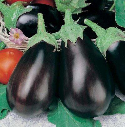 2000 видов семян для посадки! Подкормки, удобрения.   — Семена Баклажаны — Семена овощей