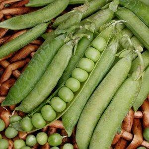 Горох Ажур Фасовка: 8 шт; Упаковка: Цветная; Характеристики: *  Высота растения- до 60 см *  Длина плода- до 10 см *  Используется в свежем виде Раннеспелый. Холодостойкий. Устойчив к полеганию. Го