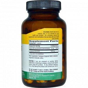 Country Life, L-тирозин, 500 мг, 100 растительных капсул