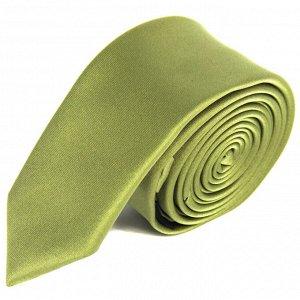 галстук              10.05-02024