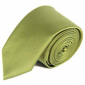 галстук              10.06-02024