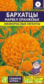 Цветы Бархатцы Марвел оранжевые/Сем Алт/цп 5 шт. Низкорослые гиганты
