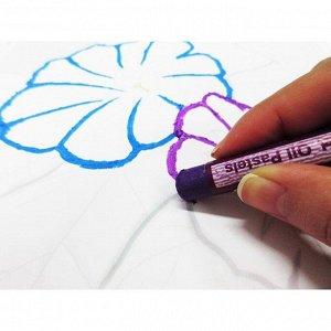 Пастель масляная, 36 цветов, Pentel, 8/60 мм, в картоне