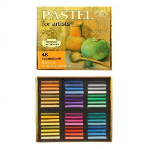 Пастель сухая, набор, 48 цветов, Soft, «Аква-Колор» (художественная)
