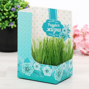 """Открытка с растущей травой """"Каждый день - это маленькая жизнь"""""""