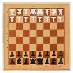 Демонстрационные шахматы магнитные (игровое поле 73х73 см, фигуры полимер, король h=6.3 см)