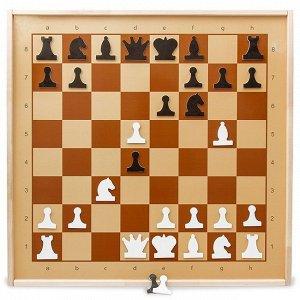 Шахматы магнитные демонстрационные 01756