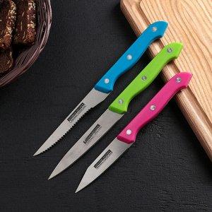 Набор кухонных ножей «Кулинарные изыски», 3 предмета, лезвие 19 см, 22 см, 23 см, цвет МИКС