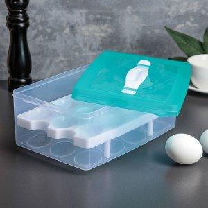 Контейнер для хранения яиц, 24 ячейки, двухуровневый, цвет МИКС