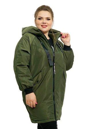 Куртка как на картинке,цвет хаки,на крупную женщину,фасон стройнит,мне очень большая к сожалению.