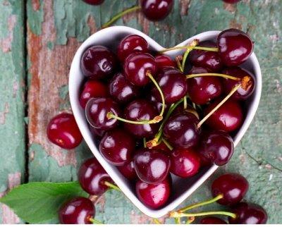 Сибирские Саженцы Плодово-Ягодные 🍏🍒 — Вишня — Плодово-ягодные