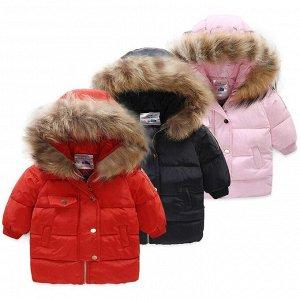 Куртка (ЗИМА) BabyKids Element 9038