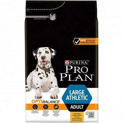 Все необходимое для любимых питомцев - очень много новинок! — Корма Pro Plan для собак — Корма