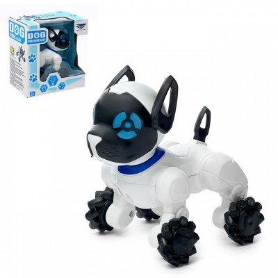Сима - Игрушки для мальчиков — Животные — Игрушки и игры