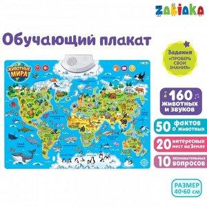 Обучающий плакат «Животные мира», звуковые эффекты