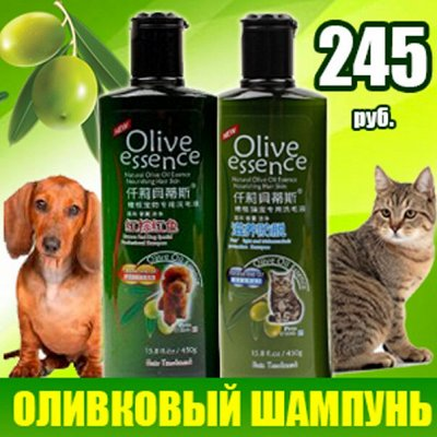Karmy - корм для собак и кошек премиум класса! №23 — ХИТ! Шампунь для собак и кошек..По просьбам.. — Уход