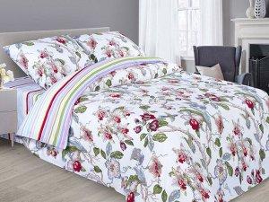 Одеяло Хлопок всесезонное поплин 140*205 (Афродита)