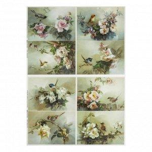 Набор декупажных карт 6 шт «Цветы и птицы»