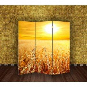 """Ширма """"Пшеничное поле"""", 160 ? 150 см"""
