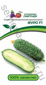 Семена Огурец партенокарпический Фуро F1  5шт