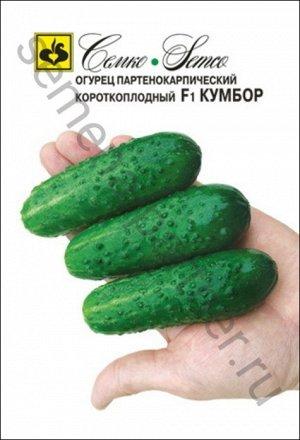 ТМ Семко Огурец партенокарпический Кумбор F1/ гибриды с длиной плодов 6-12 см